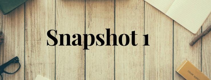 Snapshot 1