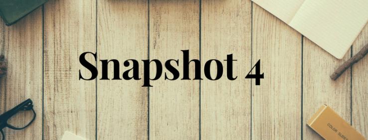 Snapshot 4