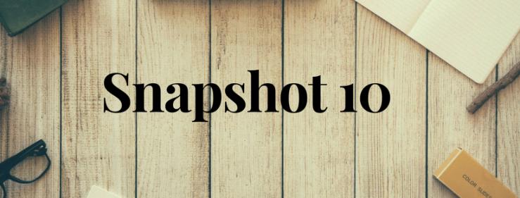 Snapshot 10