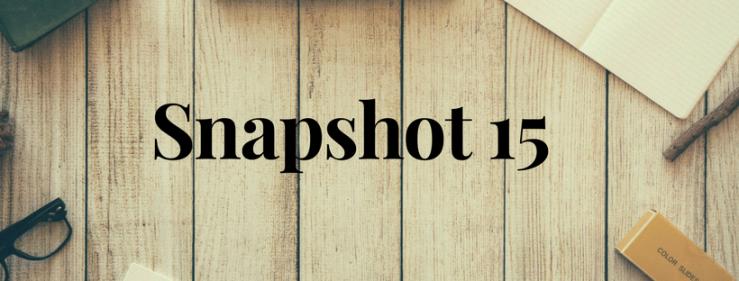 Snapshot 15