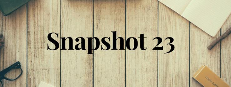 Snapshot 23