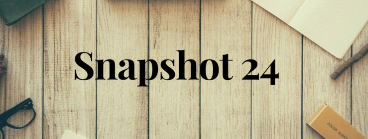Snapshot 24