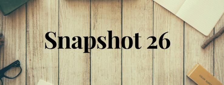Snapshot 26