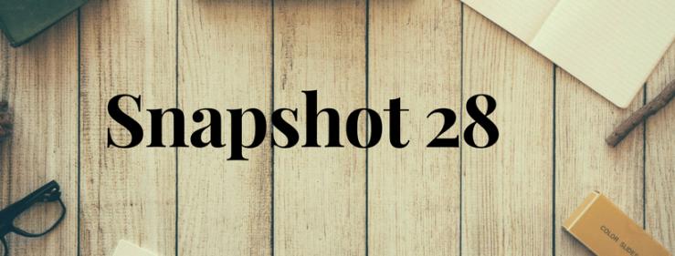 Snapshot 28