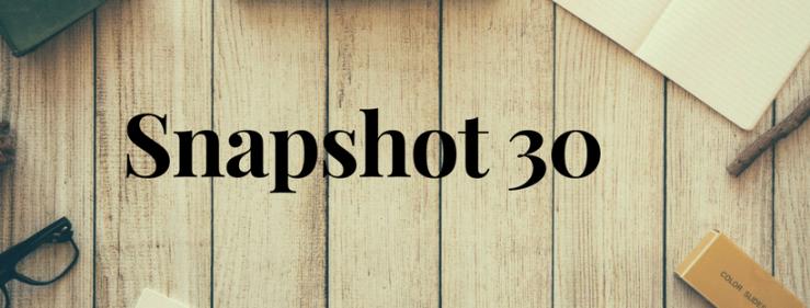 Snapshot 30