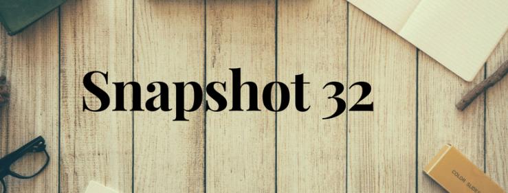 Snapshot 32