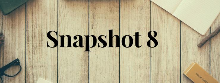 Snapshot 8