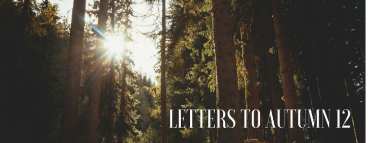 Letters to Autumn 12