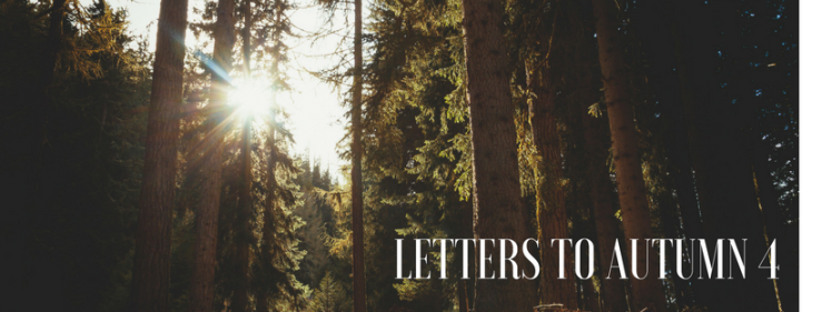 Letters to Autumn 4