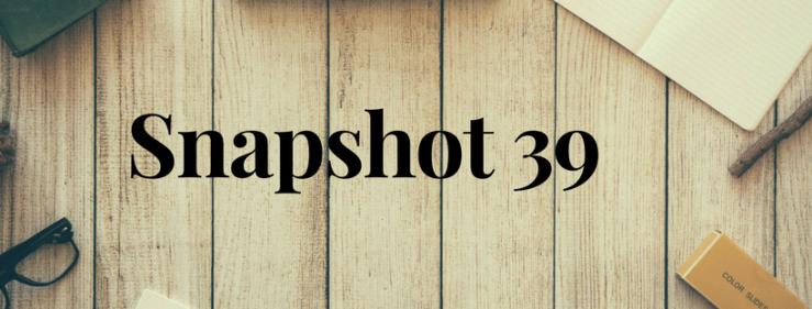 Snapshot 39