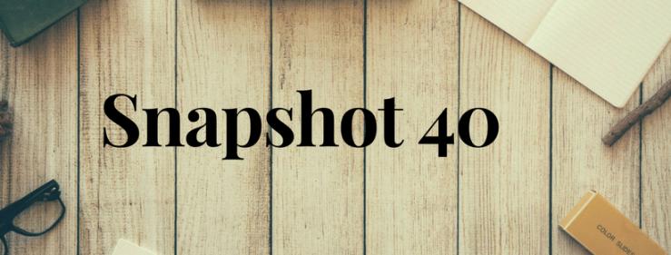 Snapshot 40