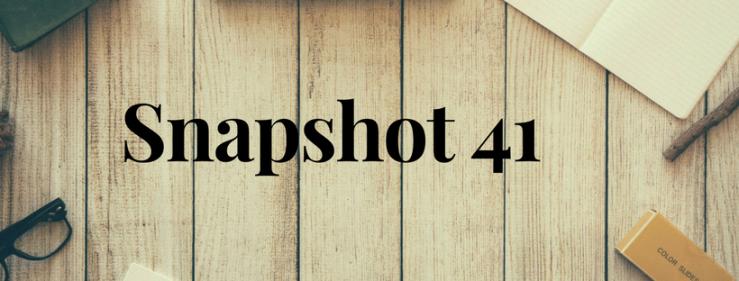 Snapshot 41
