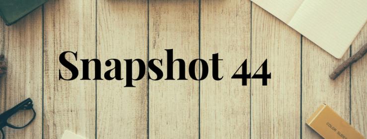 Snapshot 44