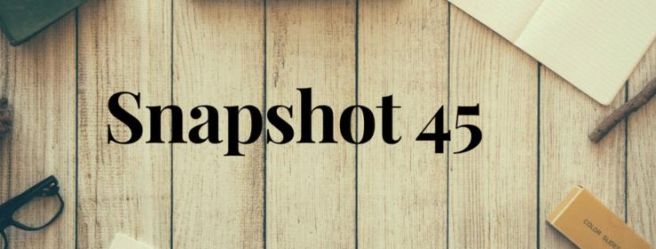 Snapshot 45