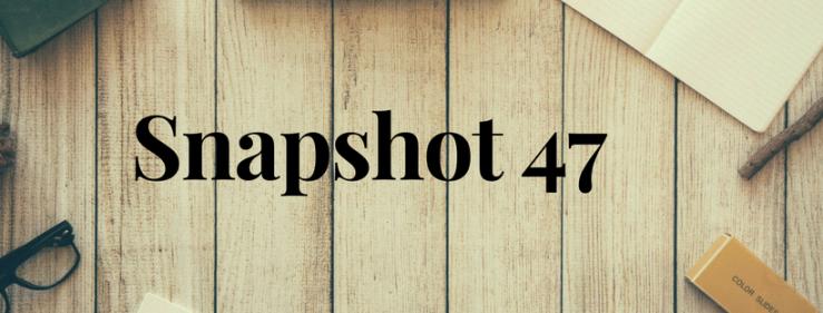 Snapshot 47