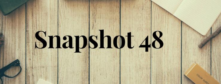 Snapshot 48