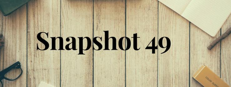 Snapshot 49