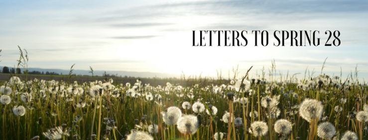 Letters to Spring 28